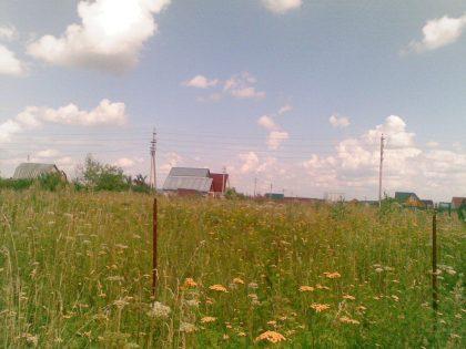 Сельчанин из Актюбинской области отстоял право на получение земли
