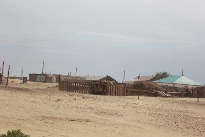 Бердібек Сапарбаев Ақтөбе облысының шалғай ауылына жақындап қалған үлкен құмды тоқтату керектігін айтты